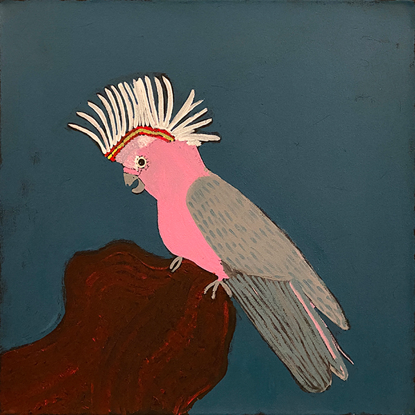 Product shot of Birds That live Around Yuendumu - © Wilma Poulson Napangardi