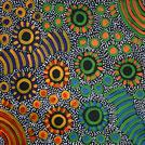 Bush Yam Dreaming - © Freda Price Petyarre
