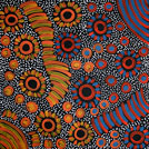 Bush Yam Dreaming - © Freda Price Petyarre