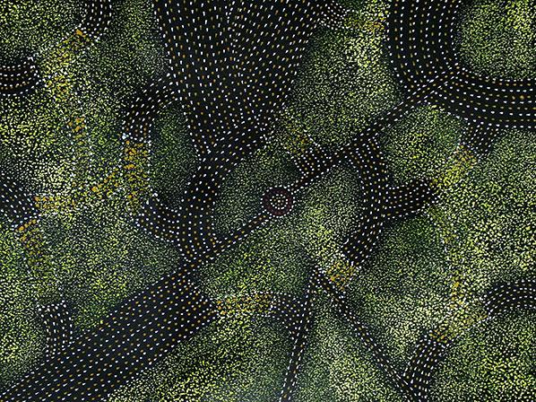 Product shot of Bush Plum Dreaming - © Gracie Morton Pwerle