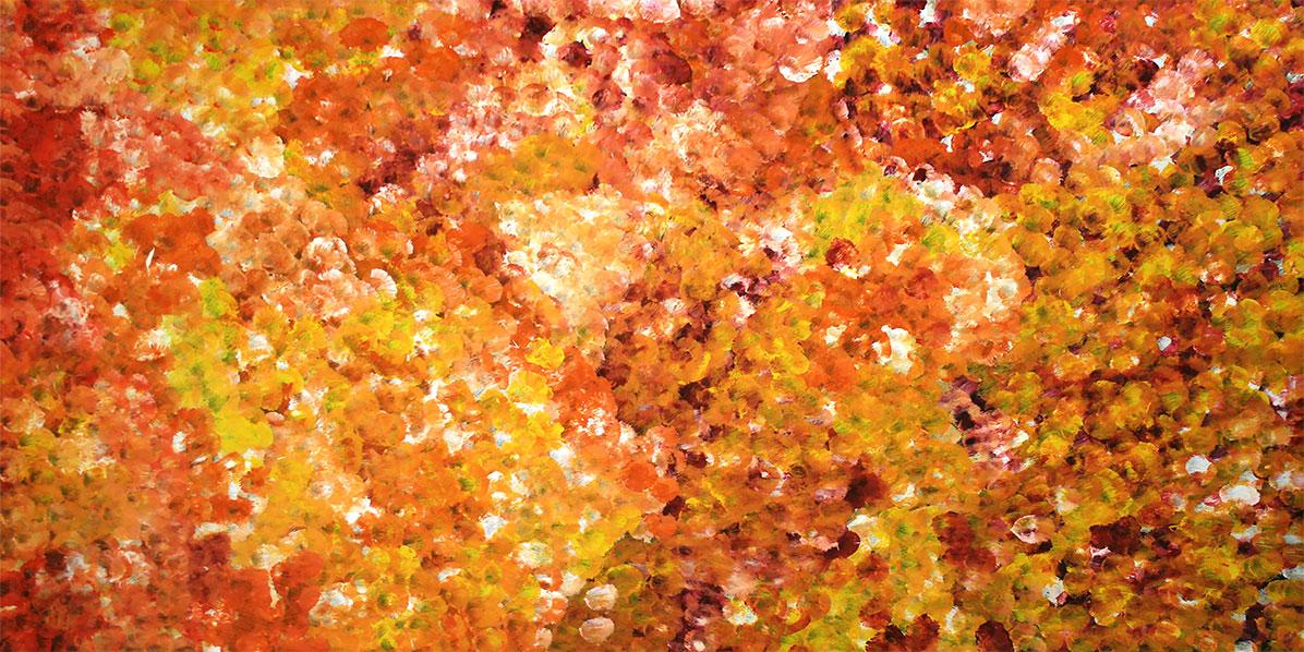 Product shot of Bush Yam Dreaming - © Janet Golder Kngwarreye