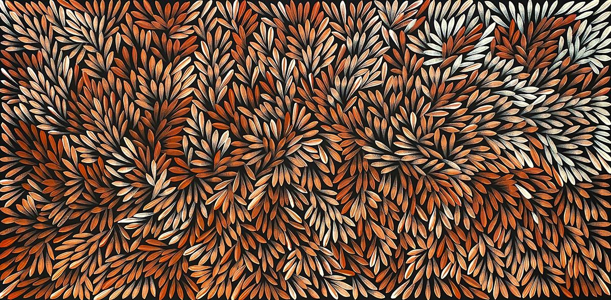 Product shot of Bush Medicine Leaves - © Sharon Numina