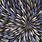 Bush Medicine Leaves - © Sharon Numina