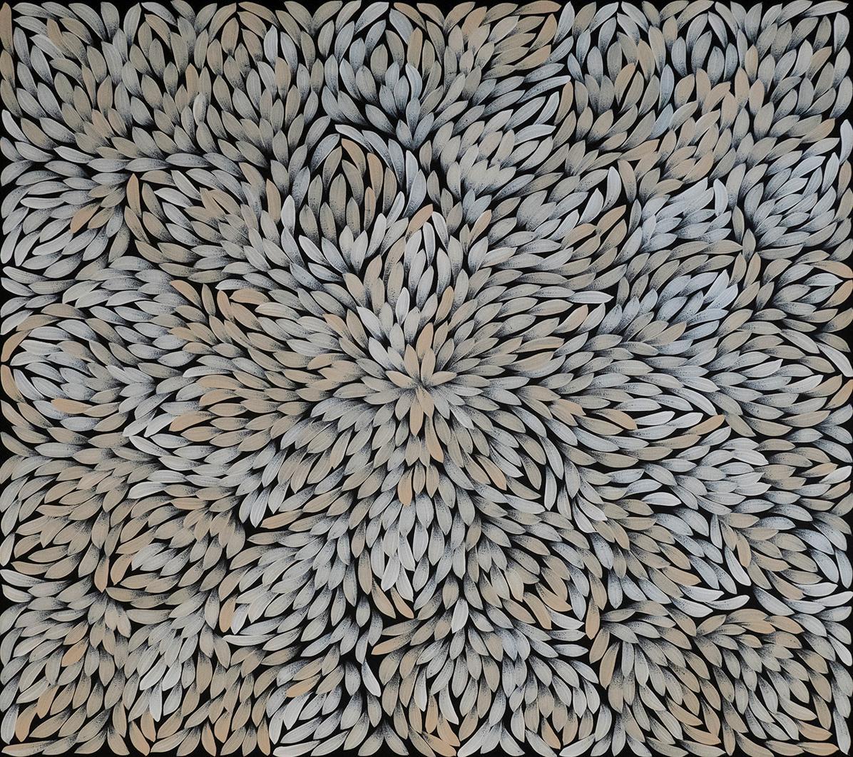 Product shot of Bush Medicine Leaves - © Jacinta Numina