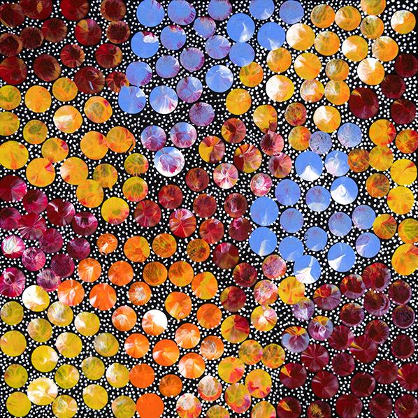 Product shot of Bush Medicine Plant - © Eileen Bird Nungala
