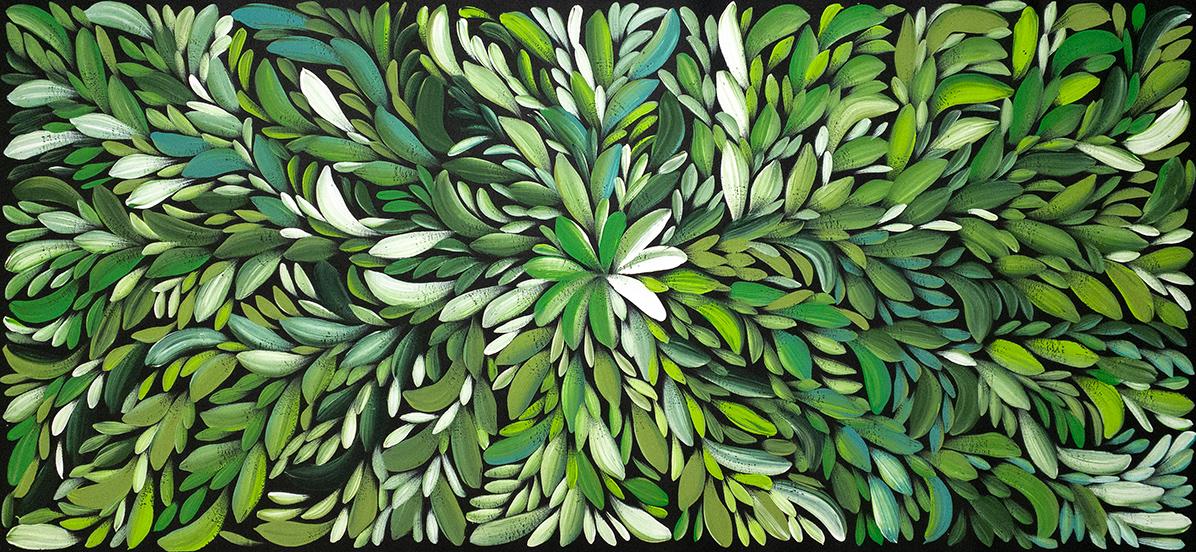Product shot of Bush Medicine Leaves - © Louise Numina Napanangka