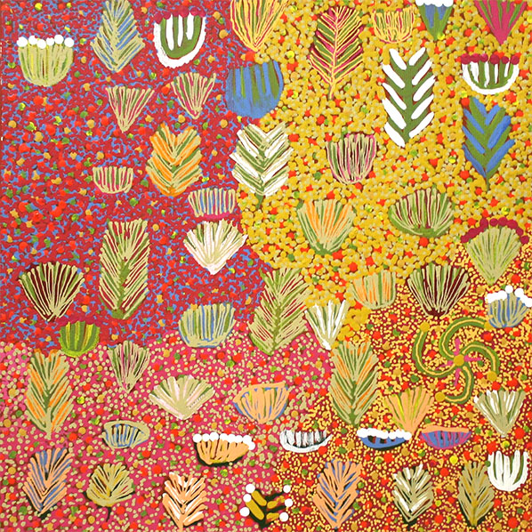 Product shot of Bush Medicine Plants - © Julie Kemarre Sandover