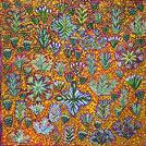 Bush Medicine Plant - © Daisy Turner Kemarre