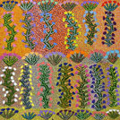Bush Medicine Plant - © Minnie Morton Ngwarraye