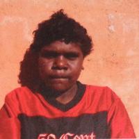 Aboriginal Artist Kurshiah Robertson Nakamarra