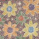 Ilyarnayt - Acacia Flower - © Michelle Lion Kngwarreye