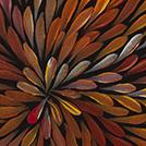 Wild Yam Flower - © Jeannie Petyarre