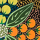 Bush Foods - © Tanya Price Nangala