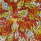 Bush Medicine Leaves - © Jacinta Numina