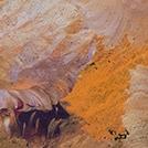 Bush Plum Dreaming - © Belinda Golder Kngwarreye