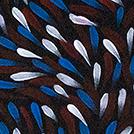 Bush Medicine Leaves - © Tammy Rumble Pitjara