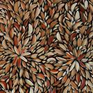 Bush Medicine Leaves - © Louise Numina Napanangka