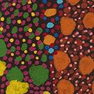 Acacia Plant - © Michelle Lion Kngwarreye