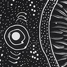 Wild Black Seeds Dreaming - © Tanya Price Nangala