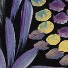 Wild Yam Flower - © Dulcie Long Pwerle