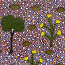 Bush Medicine Plants - © Shazalea Morton Pitjarra